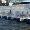 高滝湖の桟橋ドーム